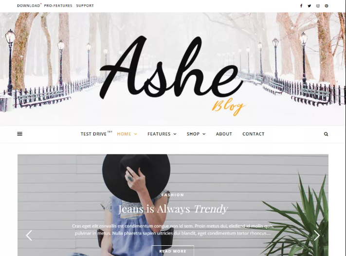 WP Theme Ashe - How to Start a Blog for Beginners