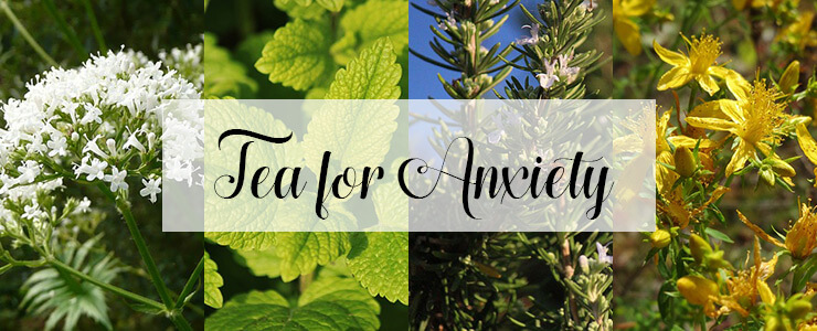 Tea for Anxiety - Herbal tea benefits - Twist of Creation