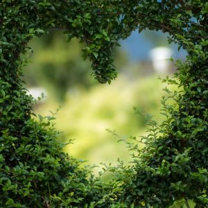 Love Poems July - Christina 2019 - Twist of Creation