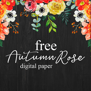 Free paper pack download